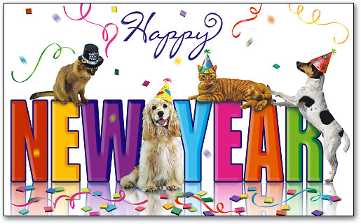 New Year's Resolutions that will make your pet happier!